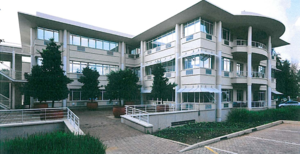 Commercial Property to rent in Bruma Eastgate Office Park, Ref: 169243