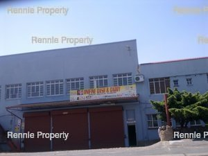 Warehouse to rent in Industria Springbok Park, Ref: 199224