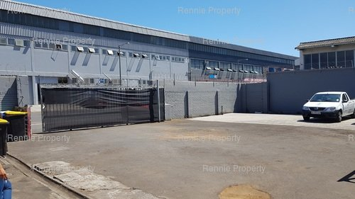 32 Carlisle Street Warehouse to let in Paarden Eiland